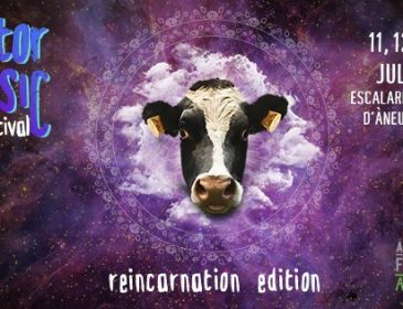 "JUL11 Doctor Music Festival 2019 ""Reincarnation Edition"""