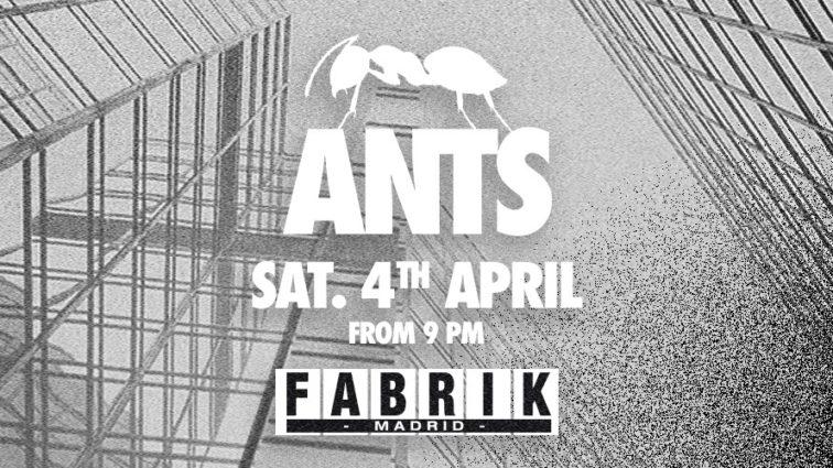 Ants en Fabrik 4 abril 2020